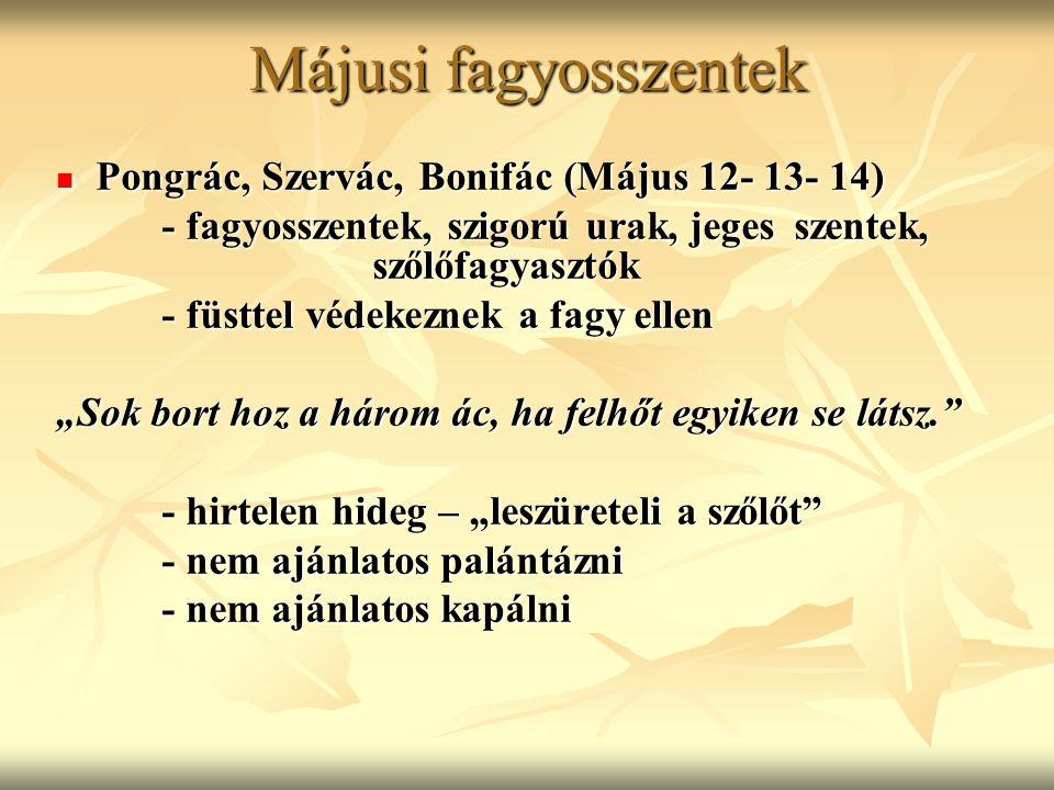 Májusi fagyosszentek Pongrác, Szervác, Bonifác (Május 12- 13- 14)