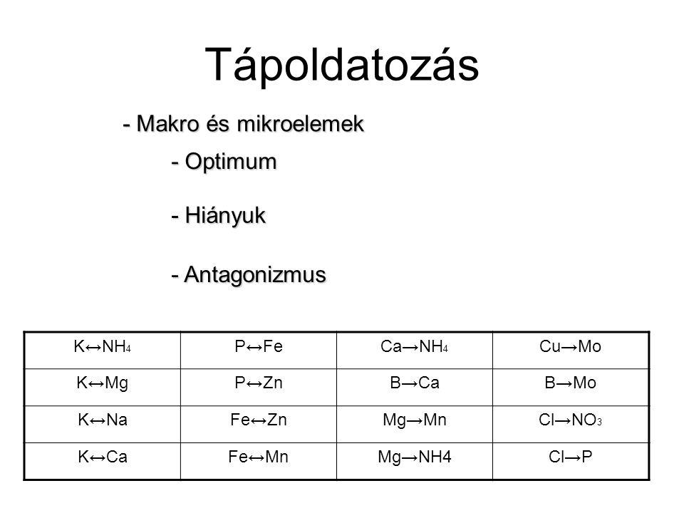 Tápoldatozás - Makro és mikroelemek - Optimum - Hiányuk - Antagonizmus