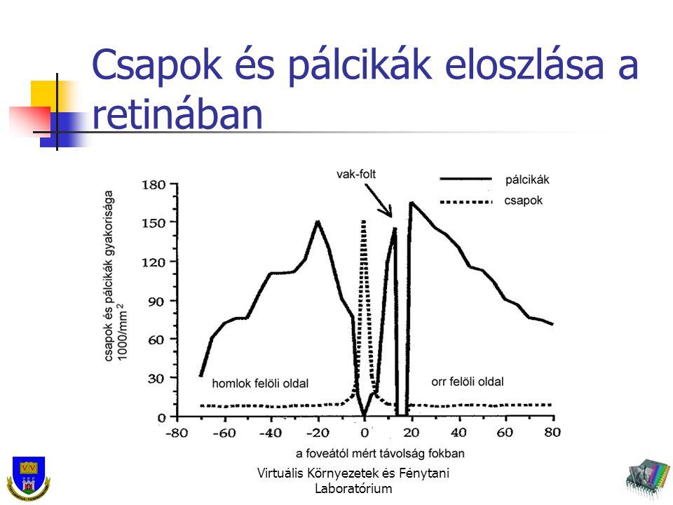 Csapok és pálcikák eloszlása a retinában