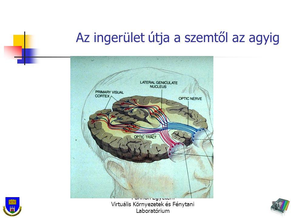 Az ingerület útja a szemtől az agyig