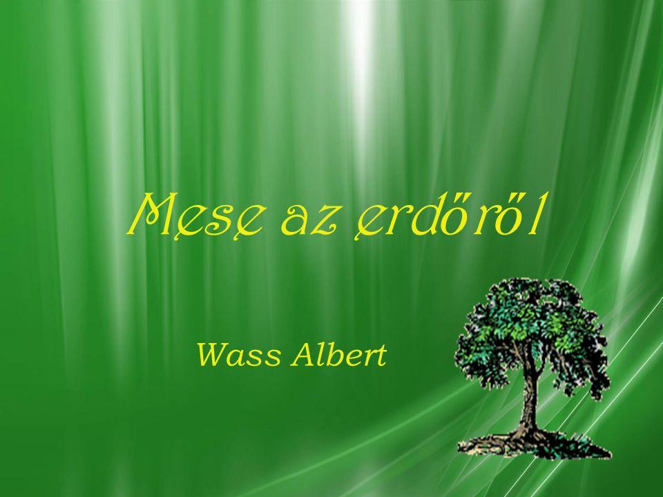 Mese az erdőről Wass Albert