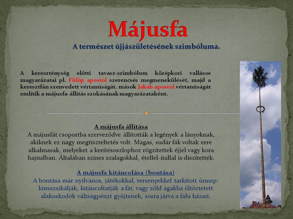 Májusfa A természet újjászületésének szimbóluma. A májusfa állítása