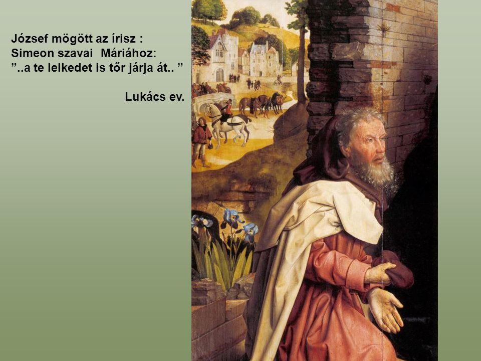 József mögött az írisz :