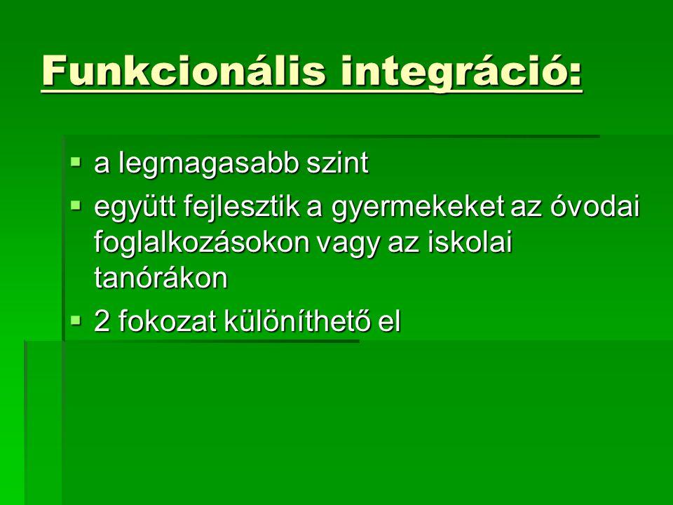 Funkcionális integráció: