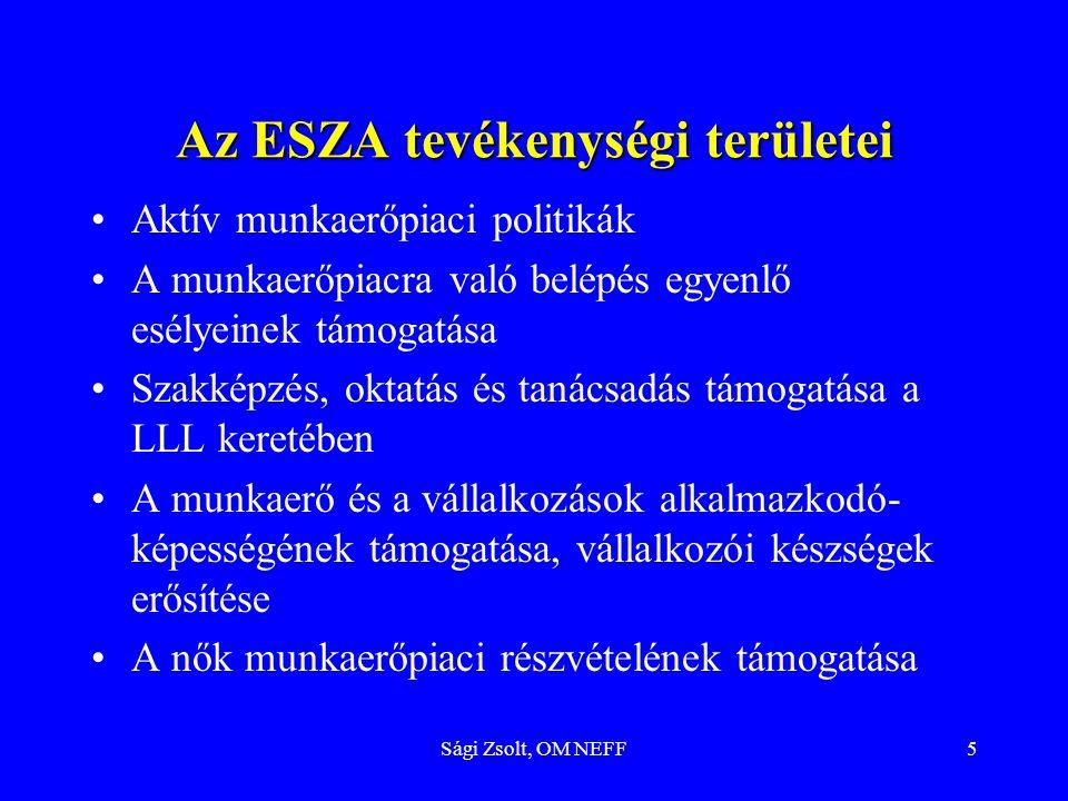 Az ESZA tevékenységi területei