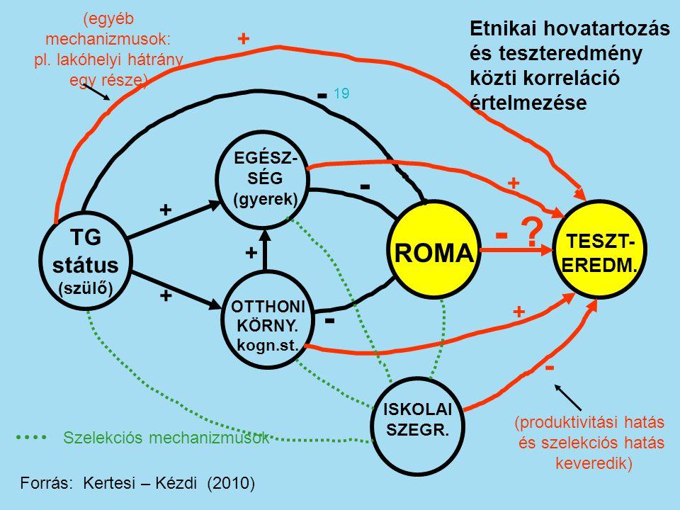 - - - - - ROMA + + + TG státus + + + Etnikai hovatartozás