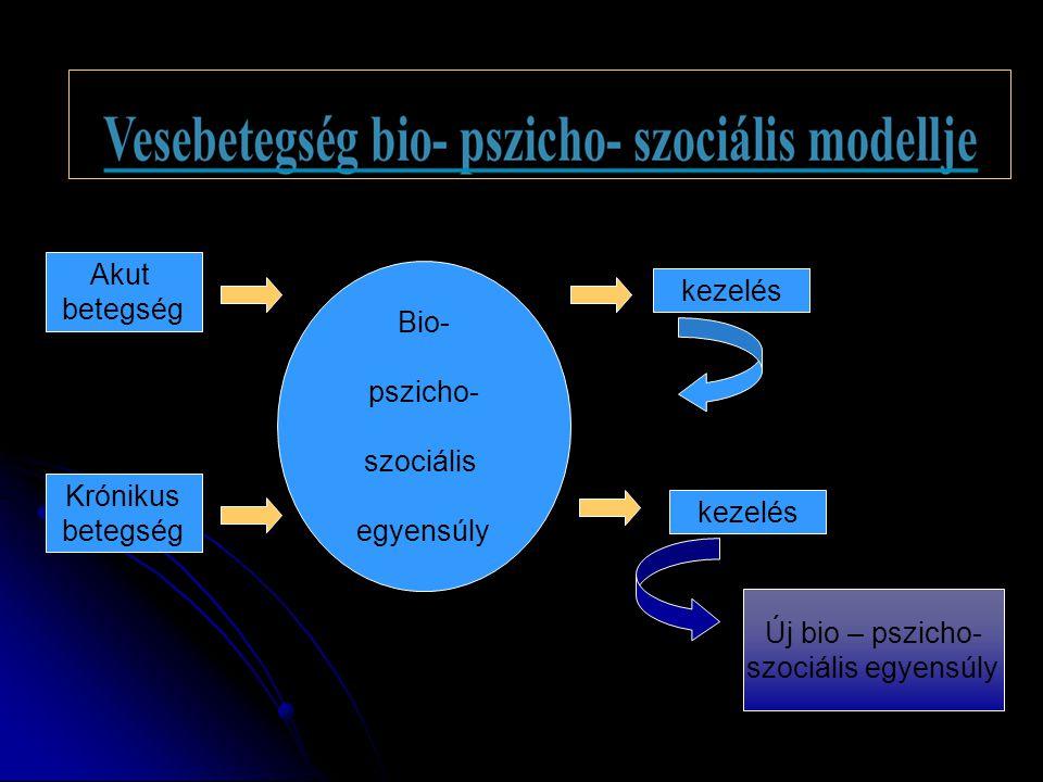 Akut betegség. Bio- pszicho- szociális. egyensúly. kezelés. Krónikus. betegség. kezelés. Új bio – pszicho-