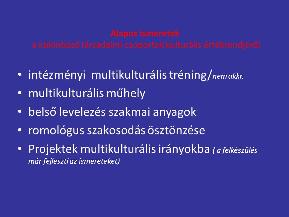 intézményi multikulturális tréning/nem akkr. multikulturális műhely