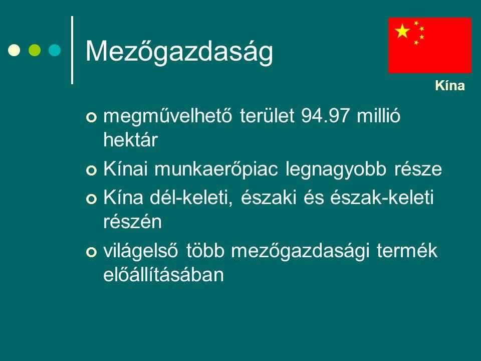 Mezőgazdaság megművelhető terület 94.97 millió hektár