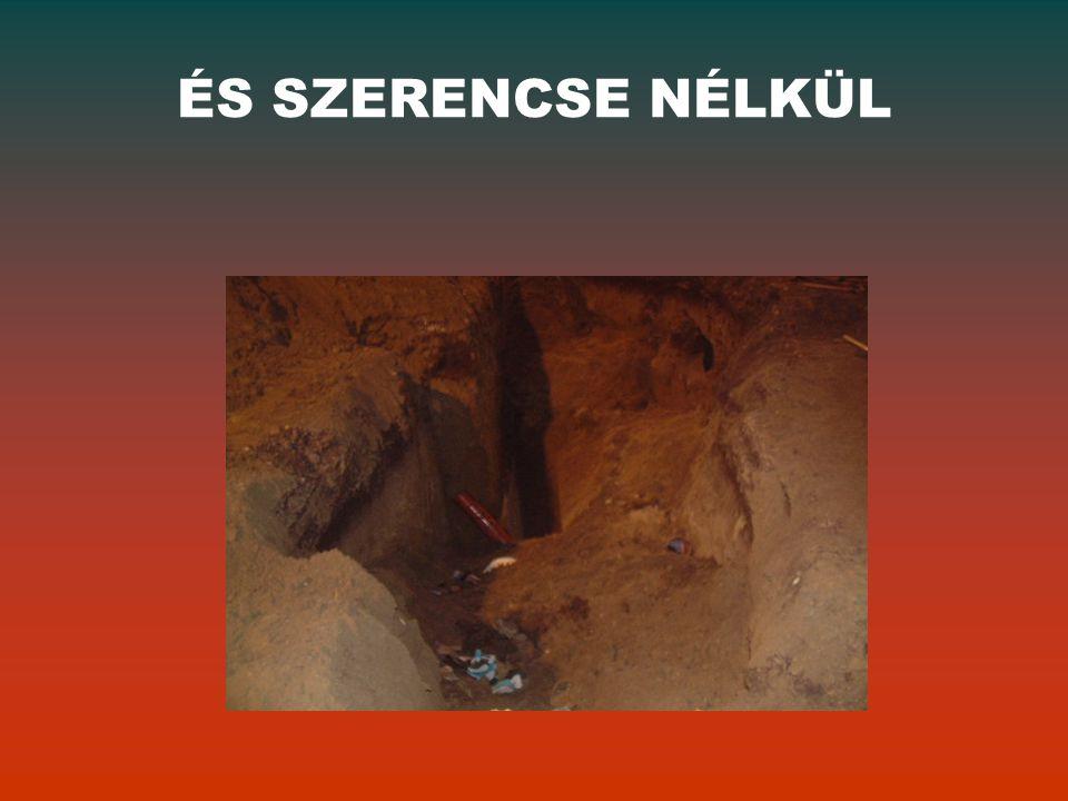 ÉS SZERENCSE NÉLKÜL