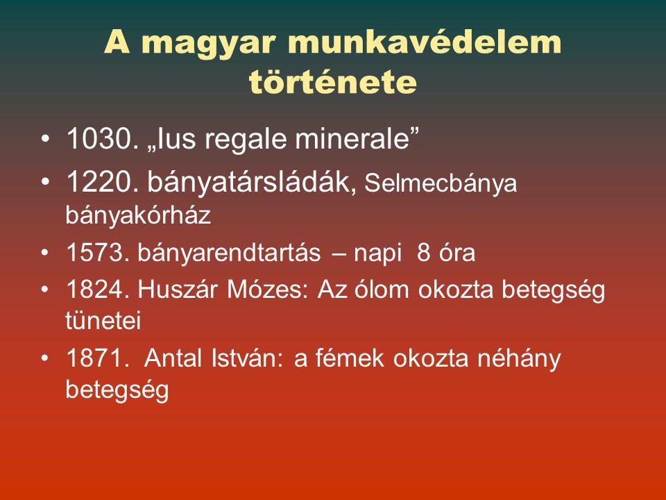 A magyar munkavédelem története