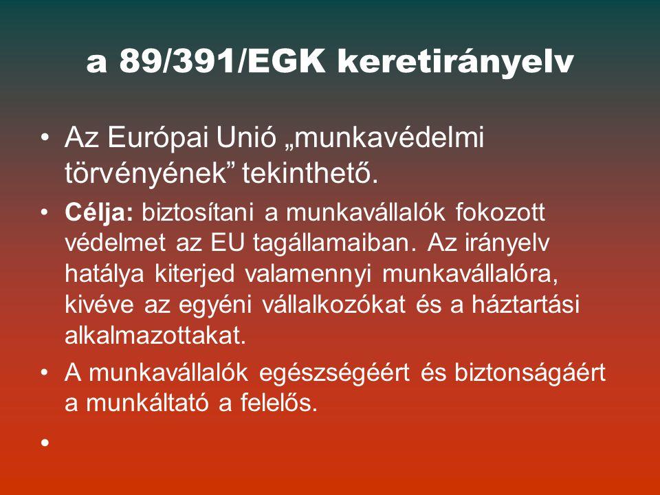 """a 89/391/EGK keretirányelv Az Európai Unió """"munkavédelmi törvényének tekinthető."""