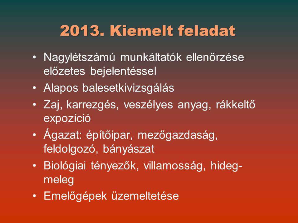 2013. Kiemelt feladat Nagylétszámú munkáltatók ellenőrzése előzetes bejelentéssel. Alapos balesetkivizsgálás.