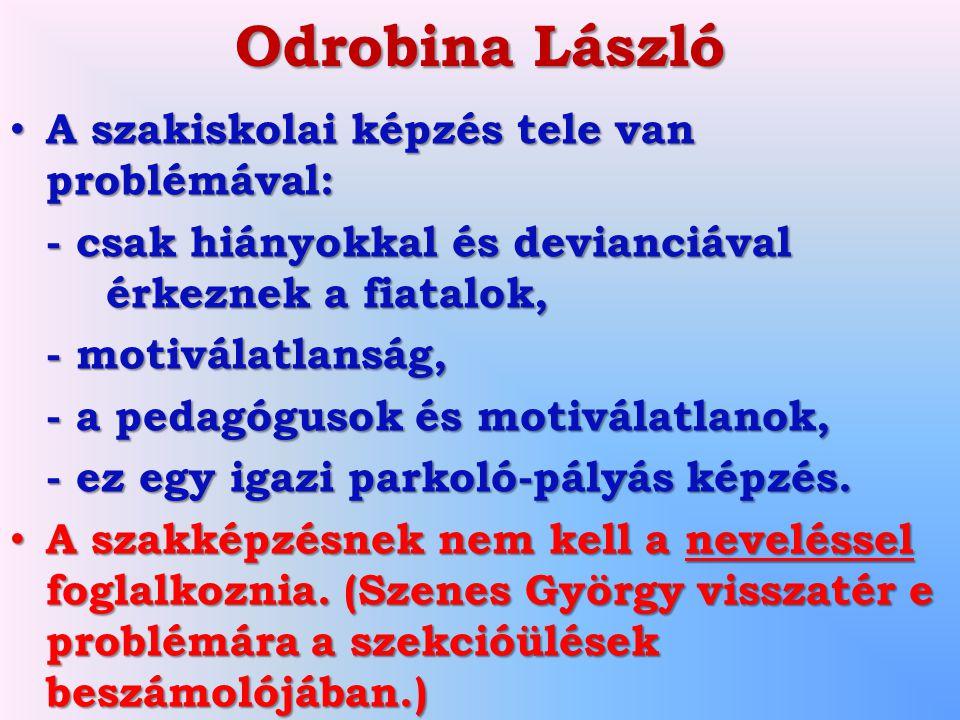 Odrobina László A szakiskolai képzés tele van problémával: