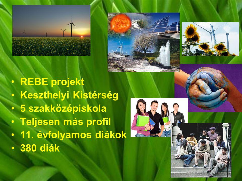 REBE projekt Keszthelyi Kistérség. 5 szakközépiskola. Teljesen más profil. 11. évfolyamos diákok.