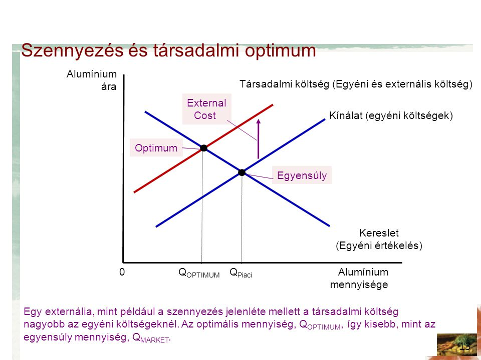 Szennyezés és társadalmi optimum
