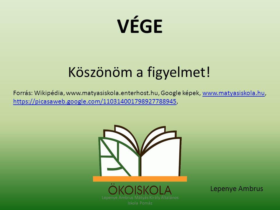 Lepenye Ambrus Mátyás Király Általános Iskola Pomáz
