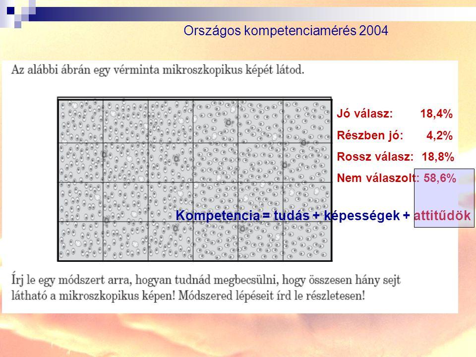 Országos kompetenciamérés 2004