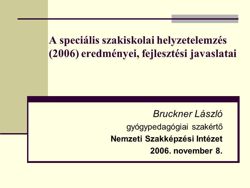 A speciális szakiskolai helyzetelemzés (2006) eredményei, fejlesztési javaslatai