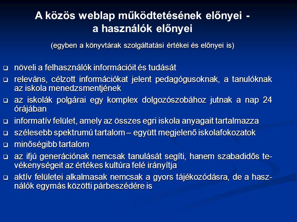 A közös weblap működtetésének előnyei -