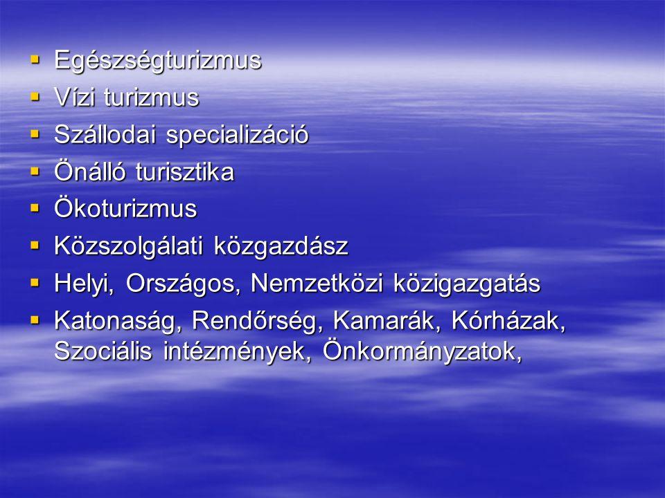 Egészségturizmus Vízi turizmus. Szállodai specializáció. Önálló turisztika. Ökoturizmus. Közszolgálati közgazdász.
