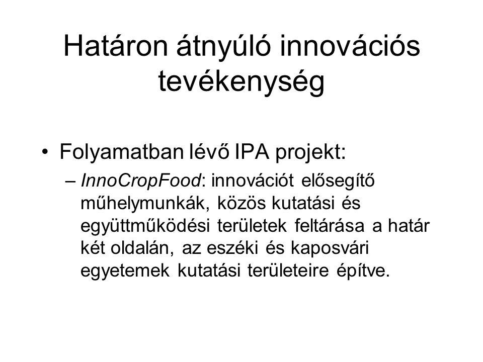 Határon átnyúló innovációs tevékenység