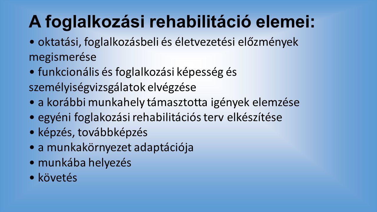 A foglalkozási rehabilitáció elemei:
