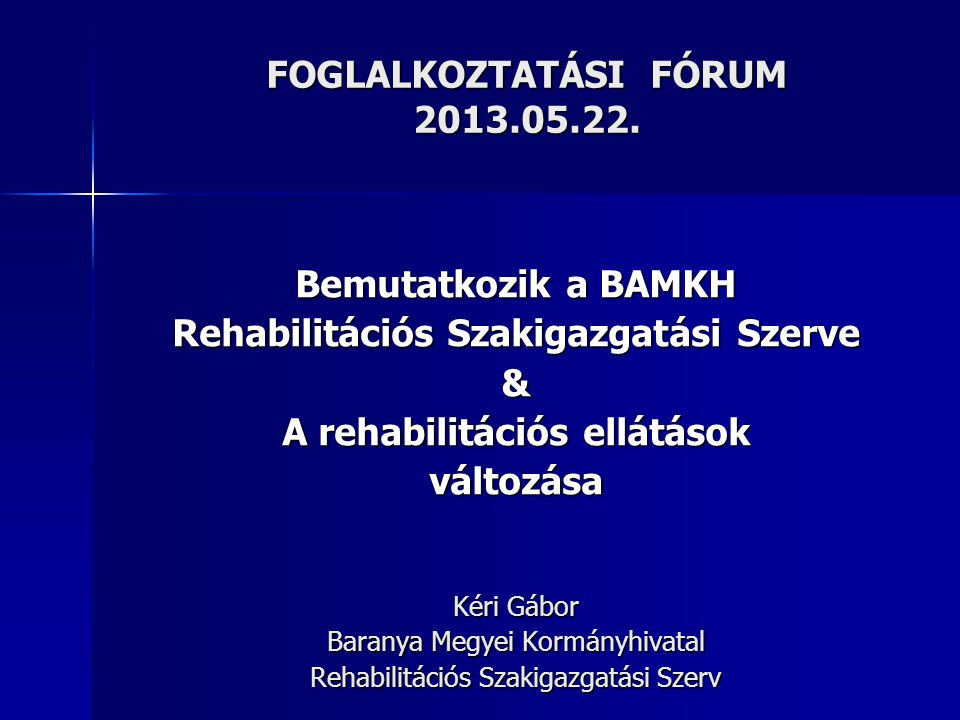 FOGLALKOZTATÁSI FÓRUM 2013.05.22.