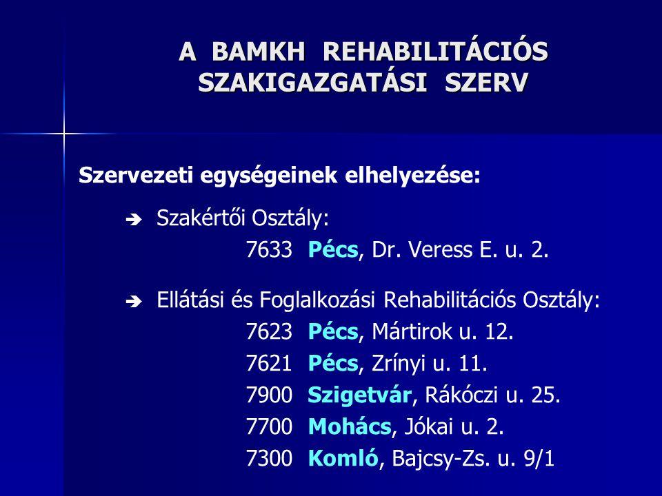 A BAMKH REHABILITÁCIÓS SZAKIGAZGATÁSI SZERV