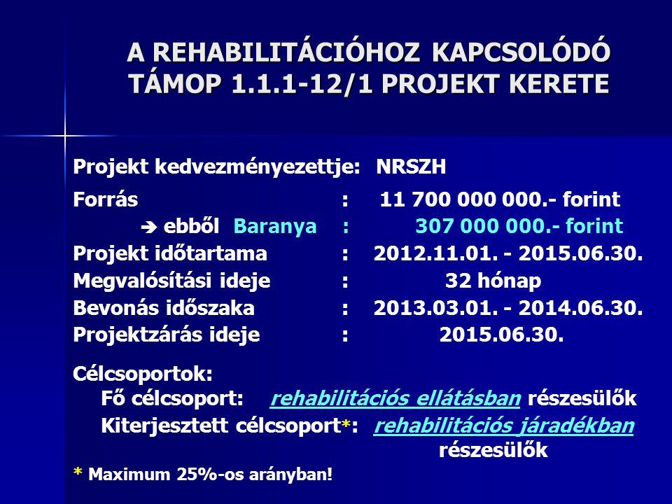 A REHABILITÁCIÓHOZ KAPCSOLÓDÓ TÁMOP 1.1.1-12/1 PROJEKT KERETE