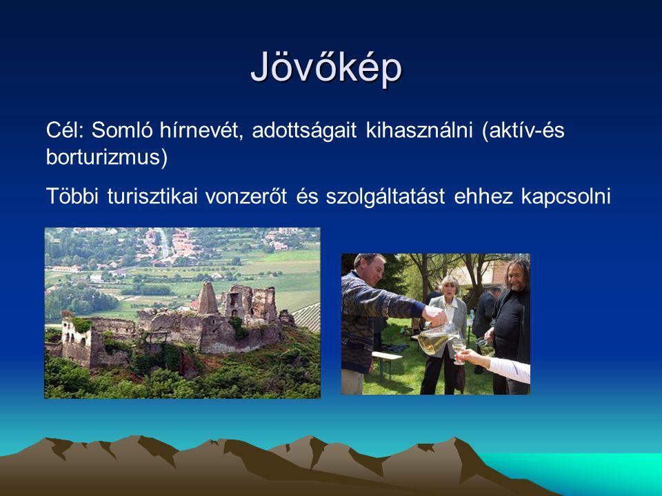 Jövőkép Cél: Somló hírnevét, adottságait kihasználni (aktív-és borturizmus) Többi turisztikai vonzerőt és szolgáltatást ehhez kapcsolni.