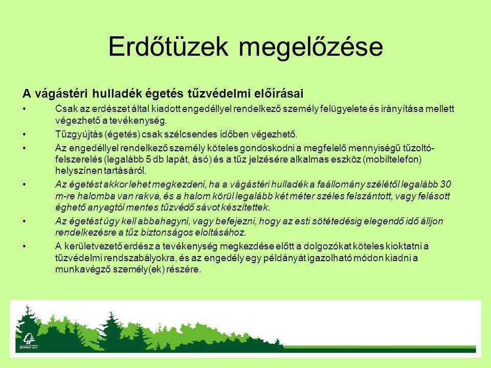 Erdőtüzek megelőzése A vágástéri hulladék égetés tűzvédelmi előírásai