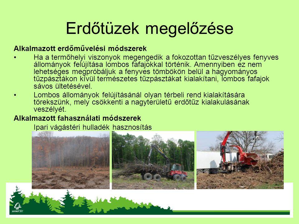 Erdőtüzek megelőzése Alkalmazott erdőművelési módszerek