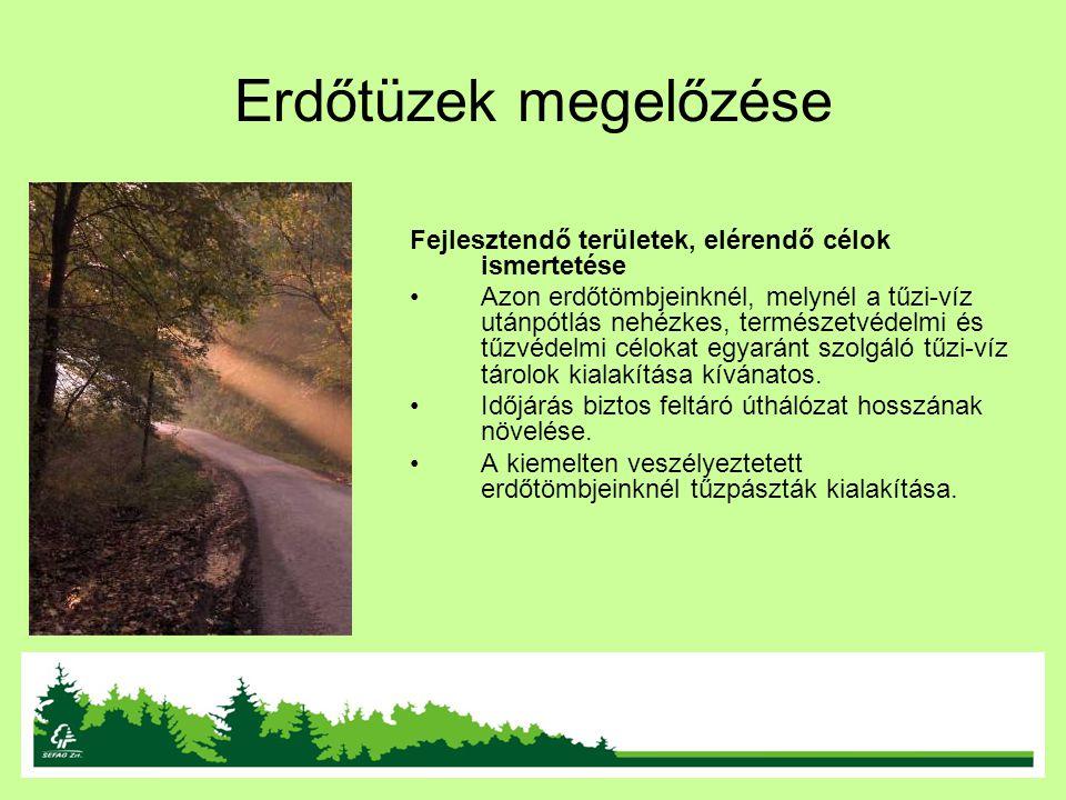 Erdőtüzek megelőzése Fejlesztendő területek, elérendő célok ismertetése.