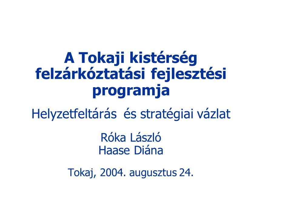 A Tokaji kistérség felzárkóztatási fejlesztési programja Helyzetfeltárás és stratégiai vázlat Róka László Haase Diána Tokaj, 2004.