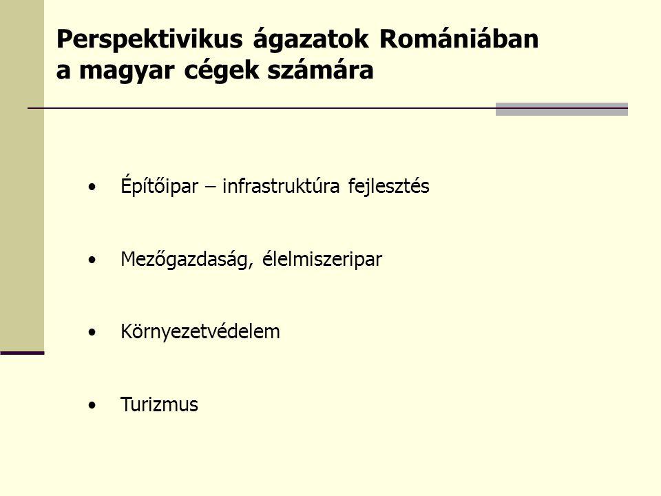 Perspektivikus ágazatok Romániában a magyar cégek számára
