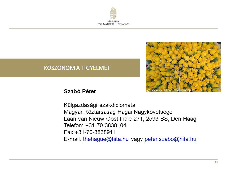 KÖSZÖNÖM A FIGYELMET Szabó Péter Külgazdasági szakdiplomata