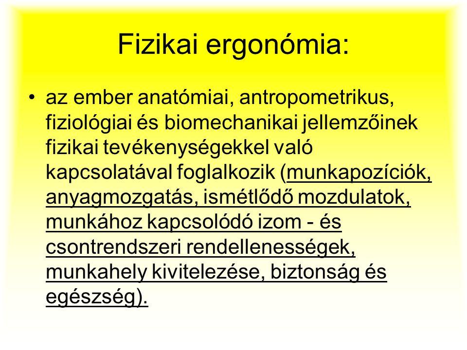 Fizikai ergonómia: