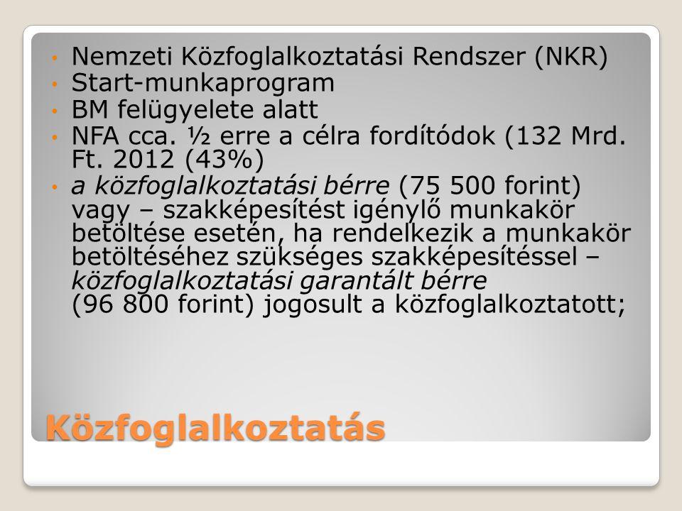 Közfoglalkoztatás Nemzeti Közfoglalkoztatási Rendszer (NKR)