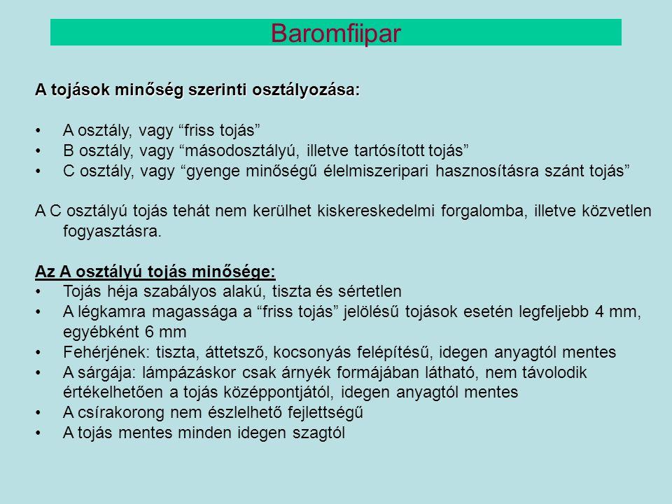 Baromfiipar A tojások minőség szerinti osztályozása: