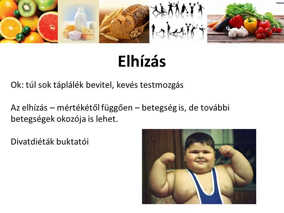 Elhízás Ok: túl sok táplálék bevitel, kevés testmozgás