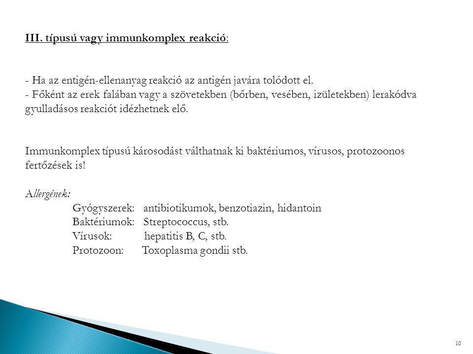 III. típusú vagy immunkomplex reakció: