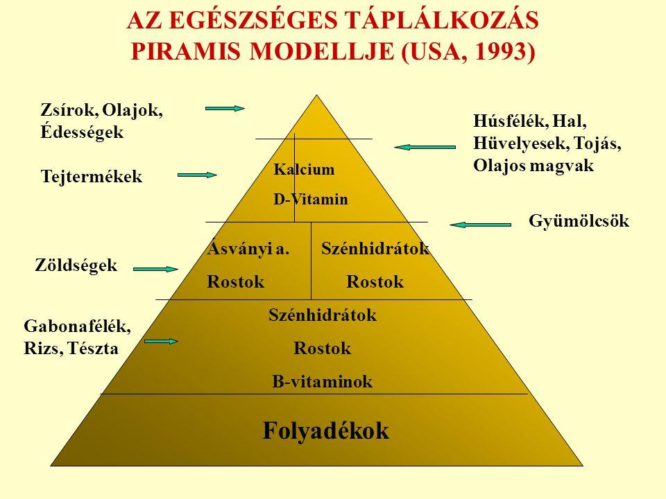 AZ EGÉSZSÉGES TÁPLÁLKOZÁS PIRAMIS MODELLJE (USA, 1993)