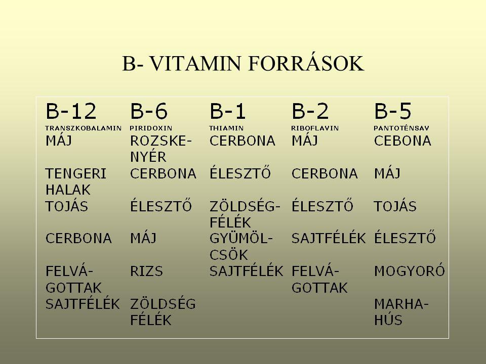 B- VITAMIN FORRÁSOK