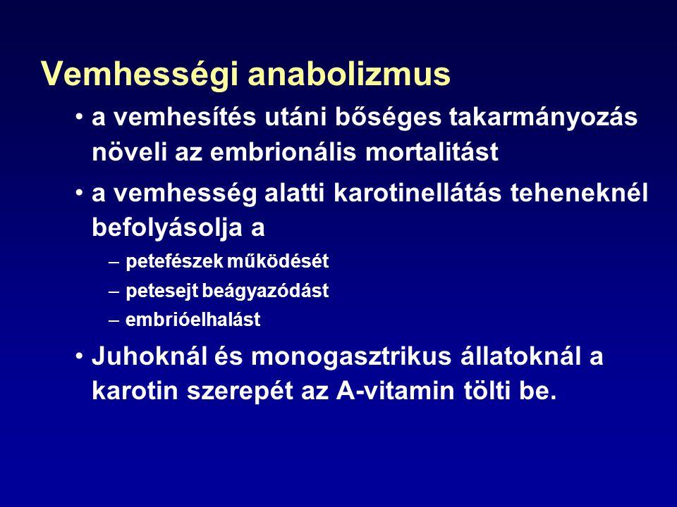 Vemhességi anabolizmus