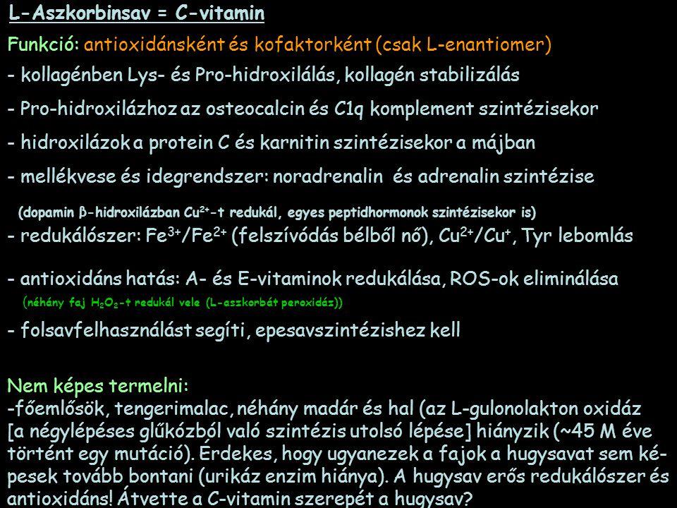 L-Aszkorbinsav = C-vitamin