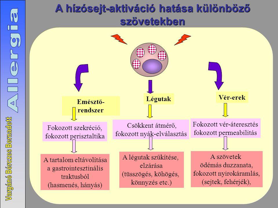 A hízósejt-aktiváció hatása különböző szövetekben