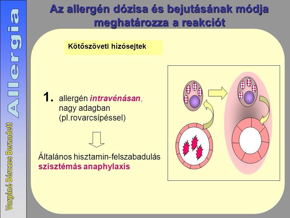 Az allergén dózisa és bejutásának módja meghatározza a reakciót