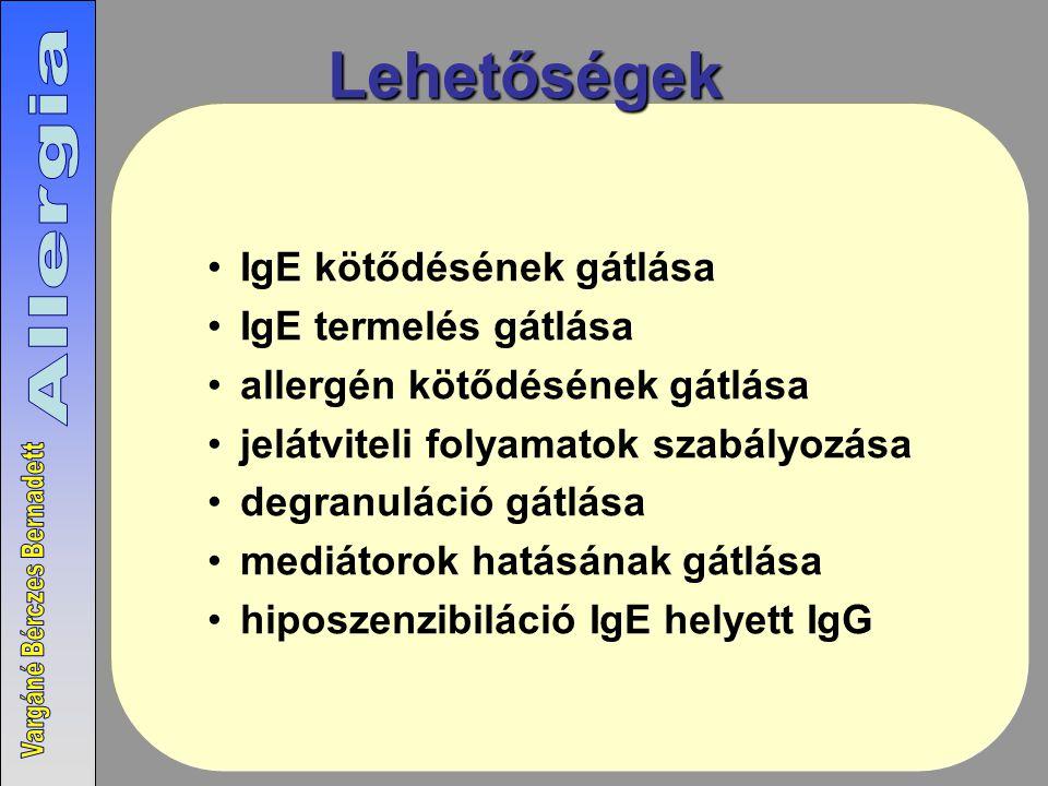 Lehetőségek IgE kötődésének gátlása IgE termelés gátlása