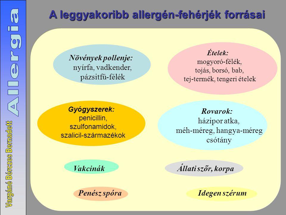 A leggyakoribb allergén-fehérjék forrásai